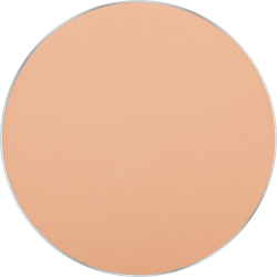 Freedom System Mattifying System 3S Pressed Powder Round 303